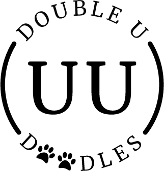 Double U Doodles